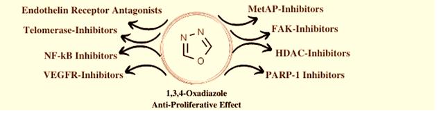 Oxadiazole kinase inhibitor