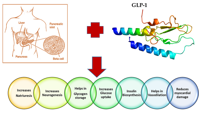 GLP agonist diabetes